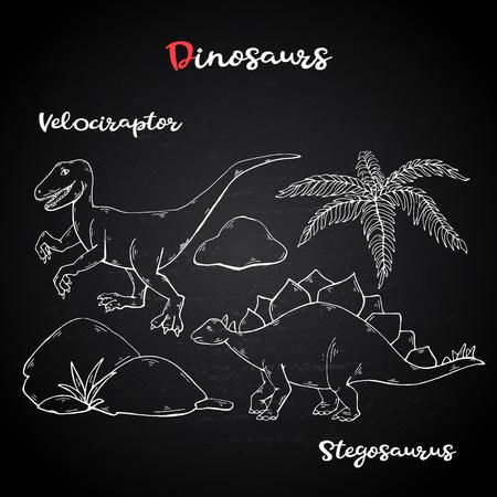Vector Velociraptor and Stegosaurus on chalk blackboard Illustration
