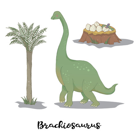 Brachiosaurus with egg nest isolated on a white background.Wild creature predator.Dinosaur period.Reptile animal