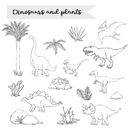 Dinosaurus set with plant isolated on a white background.Vector