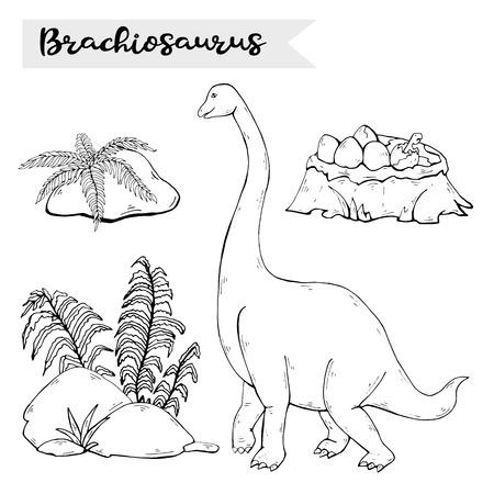 Vector Brachiosaurus with plant and dinosaur eggs nest isolated on a white .Jurassic Wildlife.Wild animals dinosaurus. Ancient animal character.Wild creatures of the Jurassic period.Black dinosaurus silhouette.