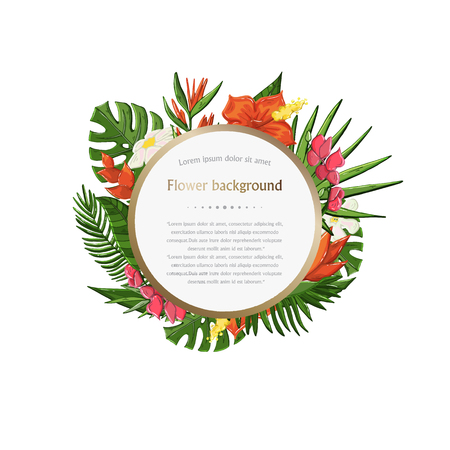 Vector Tropical plant,leaves and flowers background in circle isolated on a white background - Vector