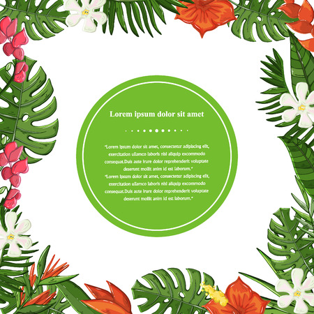Vector Tropical plant,leaves and flowers background isolated on a white background