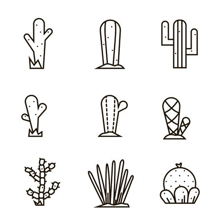 Cactus icon set.Vector collection of exotic plants.Decorative natural plant elements isolated on a white background in thin line style.
