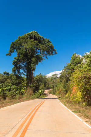 A road in a forest to Nagtabon beach in the eastern Palawan island, Philippines Zdjęcie Seryjne - 122919729