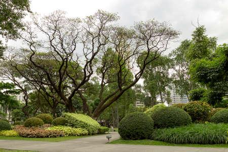 Green park in Makati, Philippiines