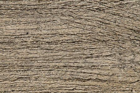 Texture background of concrete surface Imagens - 124976104