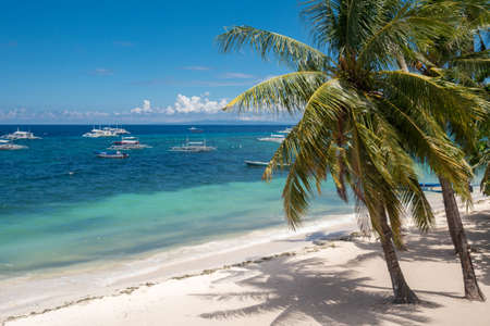Amazing paradise Alona beach with palms in Bohol Panglao island, Philippines