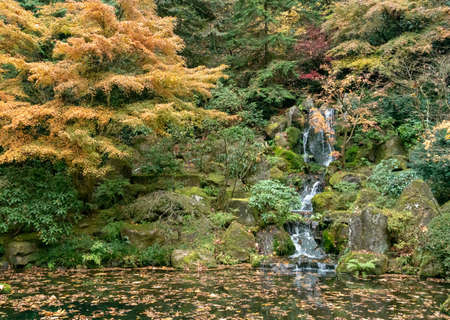 Portland, Oregon - 2018-11-20 - Waterfall inside the Japanese Tea Garden