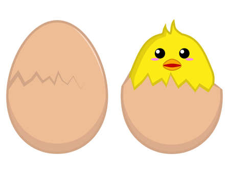hatched: Chick hatched from an egg