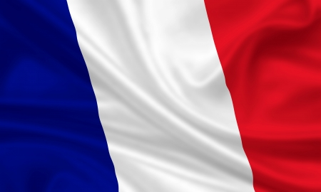 bandera francia: bandera que agita de francia