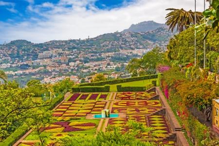 FUNCHAL, PORTUGAL, June 03: Botanical garden Jardim Botanico in Funchal, Madeira, Portugal on June 03, 2013. A famous tourist destination on the island Madeira.