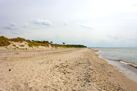 Darss Weststrand, famous beach near Darsser Ort, peninsula Fischland-Darss-Zingst, Germany photo