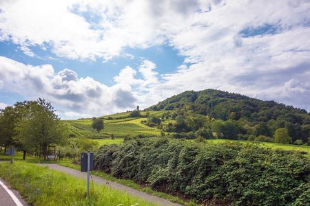 somewhere: near the vineyards somewhere in rhineland-palatinate, germany