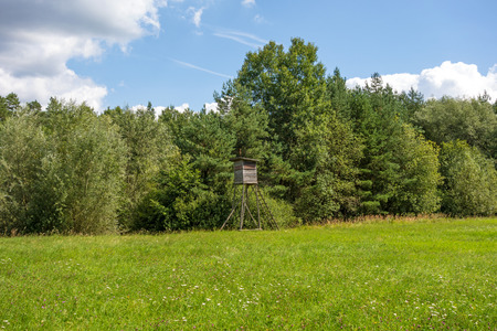 Deerstand in the forest, meadow in front, blue sky