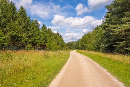 bikeway: Path, bikeway near Brombachsee, Bayern through the forest