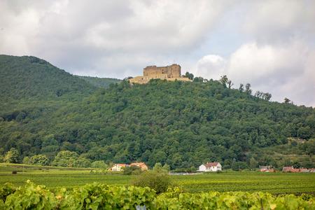 Castle Hambacher Schloss, near city Neustadt an der Weinstrasse, Germany