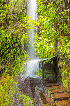 ribeira: tropical waterfall on hike trail Levada do Central da Ribeira da Janela, Madeira island Stock Photo