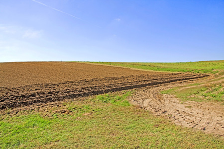 farm land: rural brown farm land field with blue and cloudless sky Stock Photo