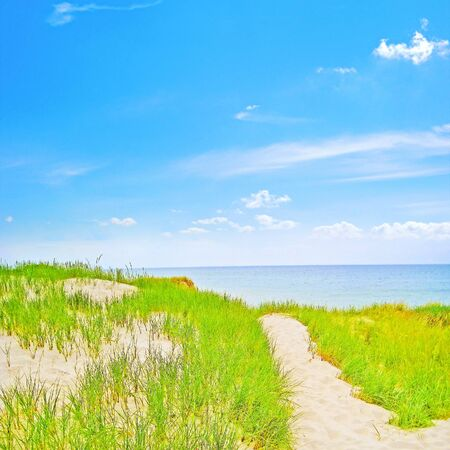 baltic sea: Way through the dunes to the beach, baltic sea, germany