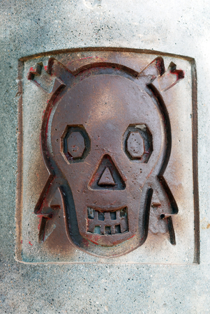 High Voltage Sign - Metal Skull with Lightning on Concrete Wall
