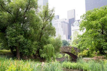 city park skyline: New York, a walk along Central Park