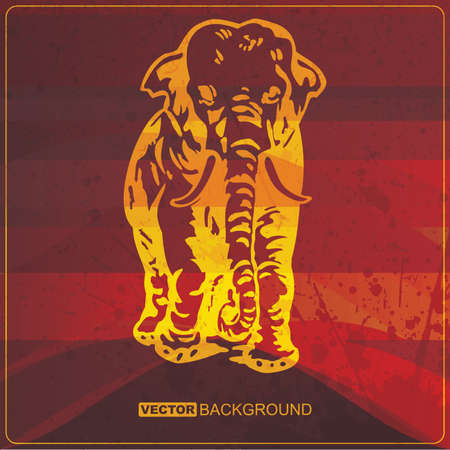 Grunge card with Elephant Vector