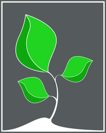 fondo natural: Fondo natural Vectores