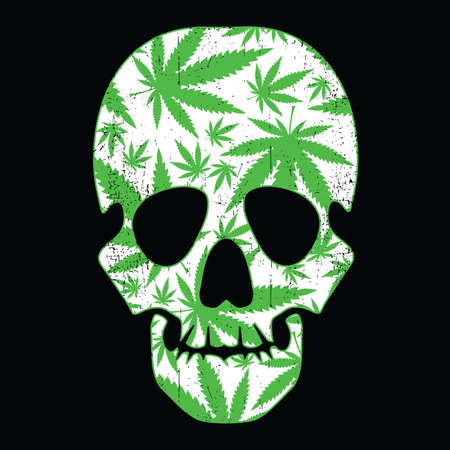 Cannabis leafs and skull on black grunge background Vector