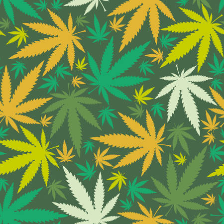 hoja marihuana: Hojas de cannabis - sin patrón Vectores