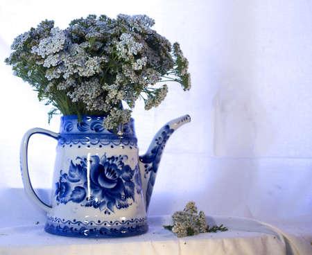 yarrow: flowers of yarrow in a white teapot Stock Photo
