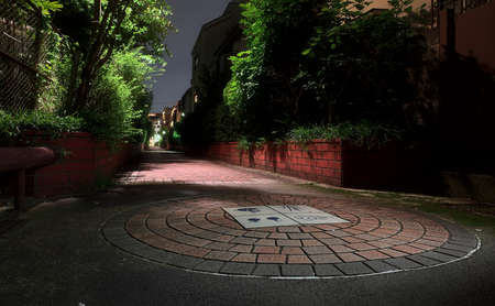 Night view of an empty brick pedestrian walkway, lined with plants and intermittent street lights