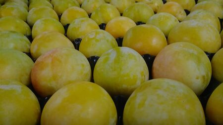 yellow plums packed and sorted
