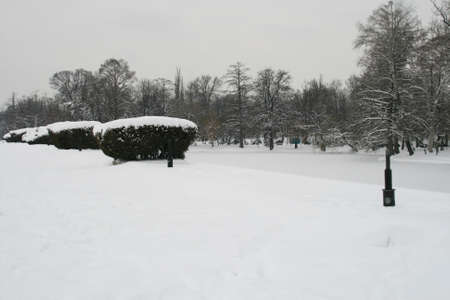 Frozen Lake In A Snow Covered Park photo