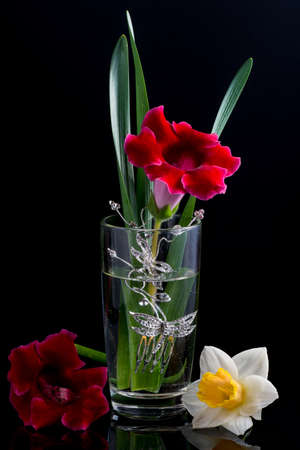 composition: floral composition glass Stock Photo