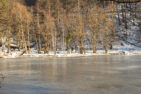 frozen lake: Bevroren meer