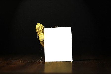 protien: Peanut holding a blank card for advertisement in the dark back ground