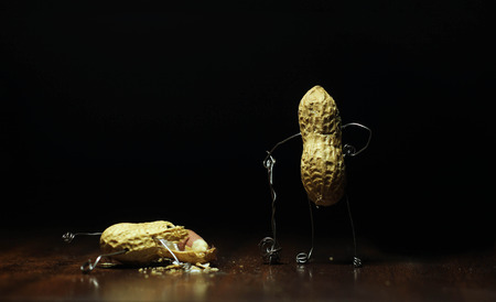 Peanut Fight. One Peanut holding hammer after crushing other peanut in spot light