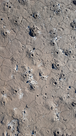 Wet sea floor texture during the low tide in the sunlight Foto de archivo - 121490972