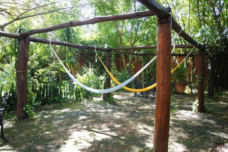 hammocks in nature Stock fotó