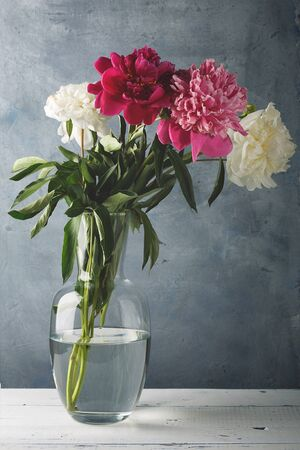 Beautiful white, purple and pink peony flowers in a glass vase on the table.