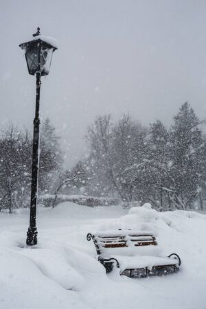 Snowfall. City landscape. Large snowdrifts in a city park.