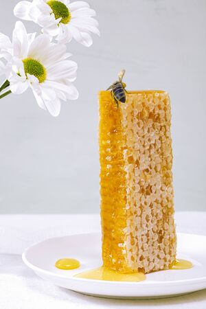 Honey background. Sweet honey in the comb. A large piece of honeycomb in a white ceramic plate, flowers and a bee on the table.