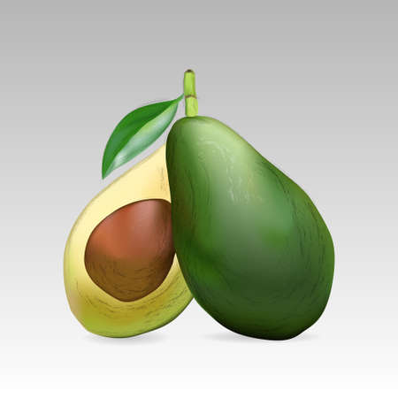the kernel: Avocado fruit, whole and in section with a kernel on a grey background. Vector illustration. EPS 10 Illustration