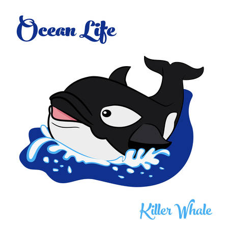 killer waves: Ocean life. Killer whale or orca swimming in the ocean. Vector illustration. Illustration
