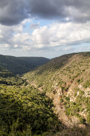 mountainous: Mountain landscape, view of the mountainous area of Upper Galilee, Israel