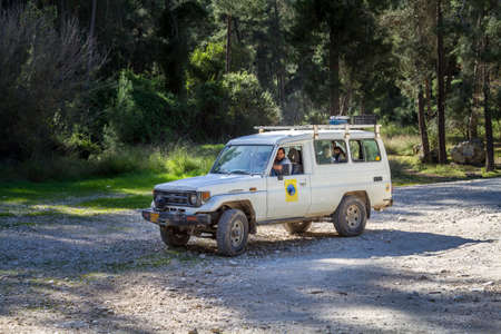 shalom: NEVE SHALOM, ISRAEL - MARCH 24: SUV rides on the country road among trees in forest, Neve Shalom, Israel on March 24, 2016 Editorial