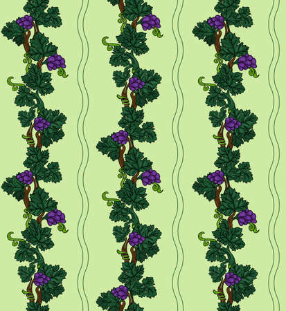 purple grapes: Grapevine seamless pattern, purple grapes with green leaves on light green background Stock Photo
