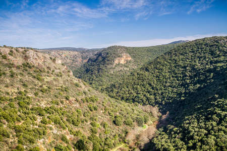 galilee: Mountain landscape, view of the mountainous area of Upper Galilee, Israel