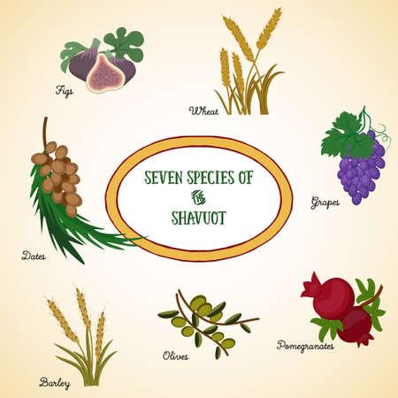 Sept espèces de Chavouot, les produits agricoles - deux grains et cinq fruits, qui sont traditionnellement consommés sur la fête juive de Chavouot.