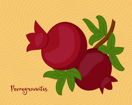 hebrew bible: Pomegranate fruits with leaves on yellow background. Raster illustration